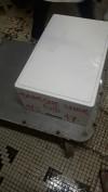 New-Sea-ApS---Senegal---Mycteroperca-rubra-2.jpg